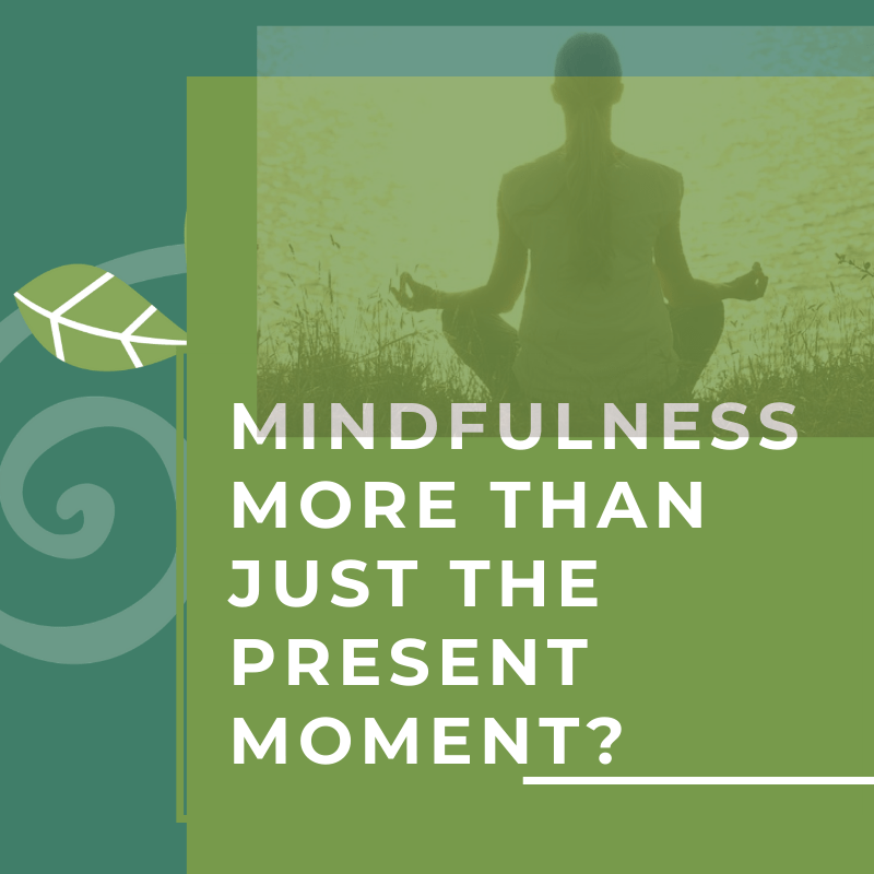 Mental Health Counseling and Psychotherapy | Suwanee, GA | Mindfulness Is Much More Than Present Moment Awareness.